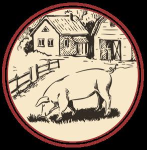 disegno suino e fattoria