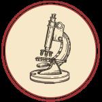 disegno microscopio