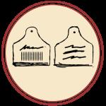 disegno etichette